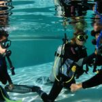 How Dive Courses Help You To Excel Brilliantly?