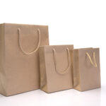 Things You Should Consider While Choose Your Carrier Bag